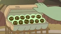 S2E12 Buff Frog's tadpoles in an egg carton