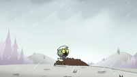 S2E2 Ludo runs to get out of the rain 1