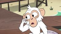 S4E2 White monkey removing its mole