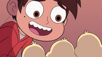 S2E39 Marco Diaz looking over the ducklings
