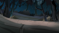 Diaz Family Vacation background - Forest of Death 5