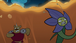 Click here to view the image gallery for Unnamed flower monster.