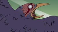 S4E24 Sebastian ominously squawks in the sky