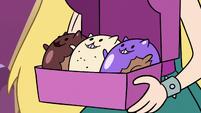 S3E35 Box of Kitten Donuts