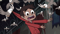 S3E20 Marco Diaz calling out for help