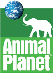 Animal Planet 2006.png