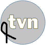 TVN (żałobne logo) (2005-2012).png