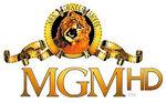 MGM HD.jpg