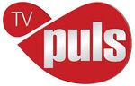 TV Puls (obecne logo).jpeg