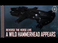 Star Citizen- Reverse the Verse - A Wild Hammerhead Appears