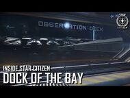 Inside Star Citizen- Dock of the Bay - Winter 2021