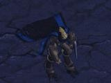 Темный тамплиер