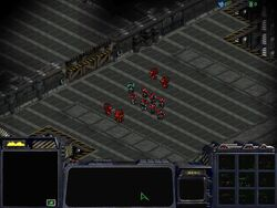 StarCraft T04.jpg