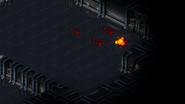 Fu kills commander