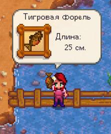 Ловля рыбы.png
