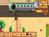 Calico Desert