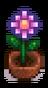 Сезонное растение 13.png