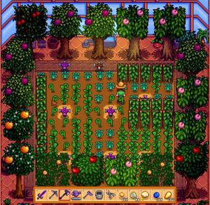 Greenhousefruit