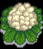Гигантская цветная капуста.png