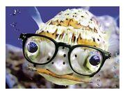Smart-fish.jpg