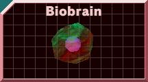 Biobrain