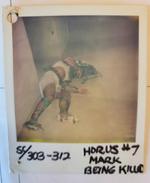 Horus7 bts2
