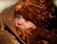 Shifu infant
