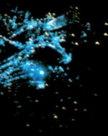 The Starlight L84.jpg