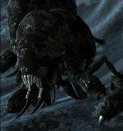 ArachnidRoyalSentry