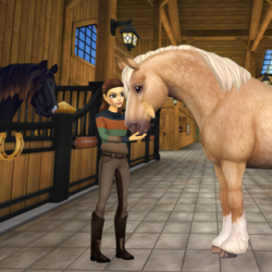 Häst (SSO)