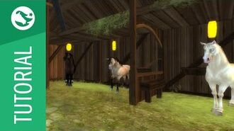 Star_Stable_Tutorial_-_Horses