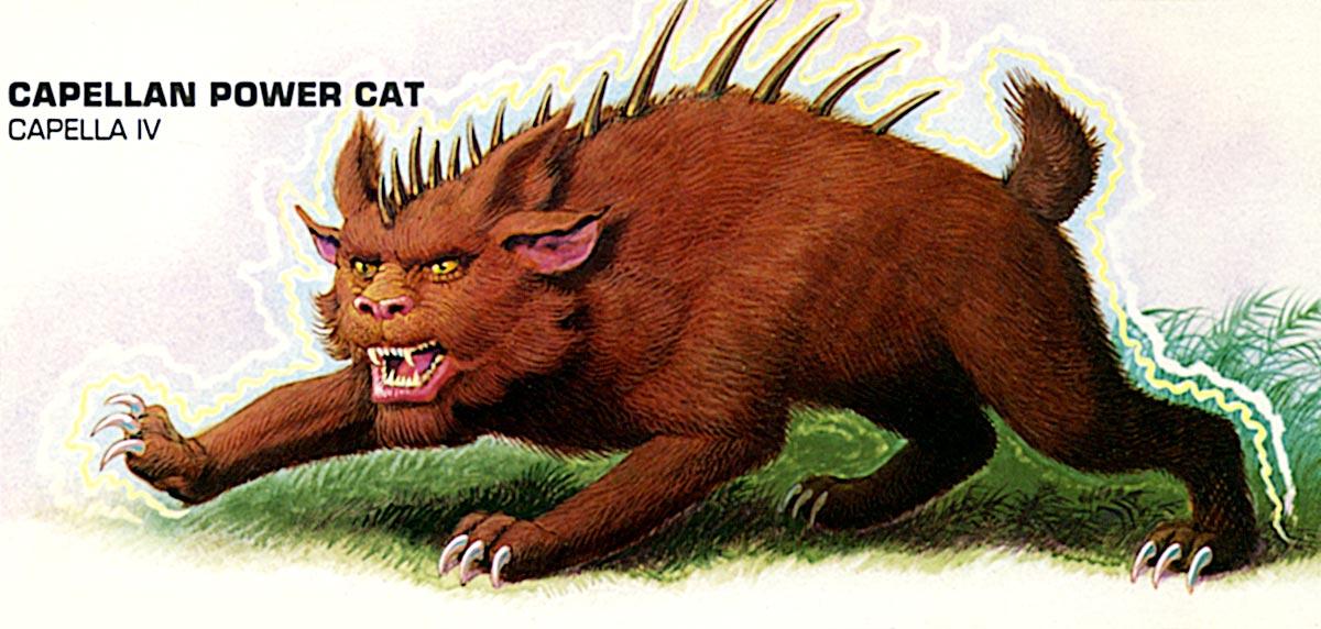 Capellan power-cat