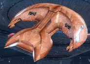 D'Kora Type 1