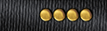 Collar rank insignia.