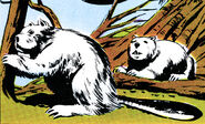 GK54-Plutonian snow-beavers