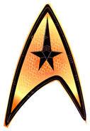 Enterprise cmd insignia