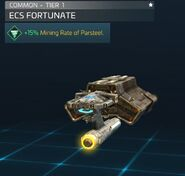 ECS Fortunate
