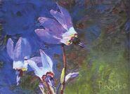 Phoebe Janeway painting