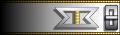 Uniform clasp insignia image.