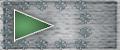 shoulder board insignia.