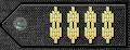 Epaulet insignia.