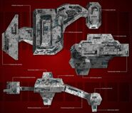 Borg type 03 ortho