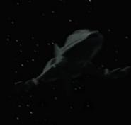 Andorian ship