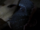Malurian.png