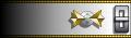 Uniform shoulder insignia.