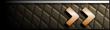 rank insignia.