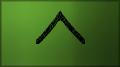 Uniform sleeve insignia.