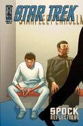 Spock Reflections 1IR