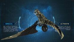 Bird of Prey DSC.jpg