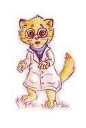 Альфис кошка